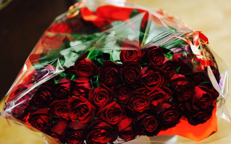 赤薔薇のみの花束