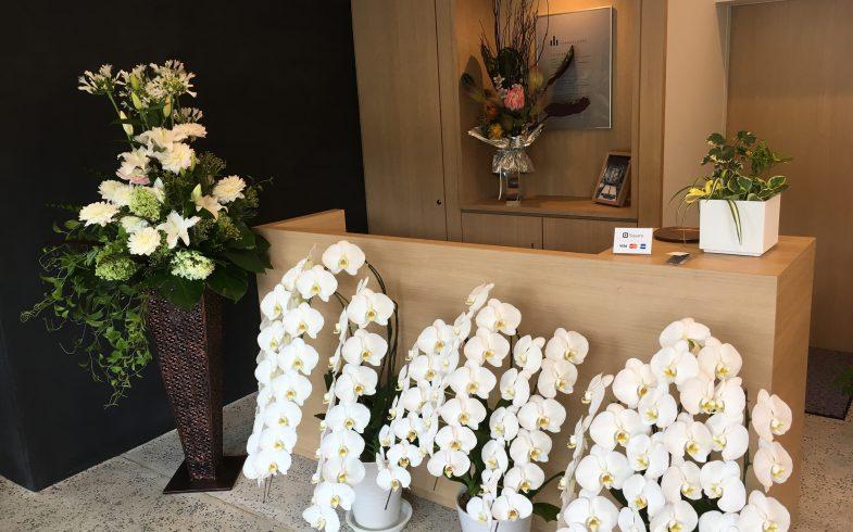 改装お祝いの花