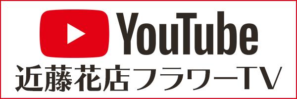 近藤花店フラワーTV